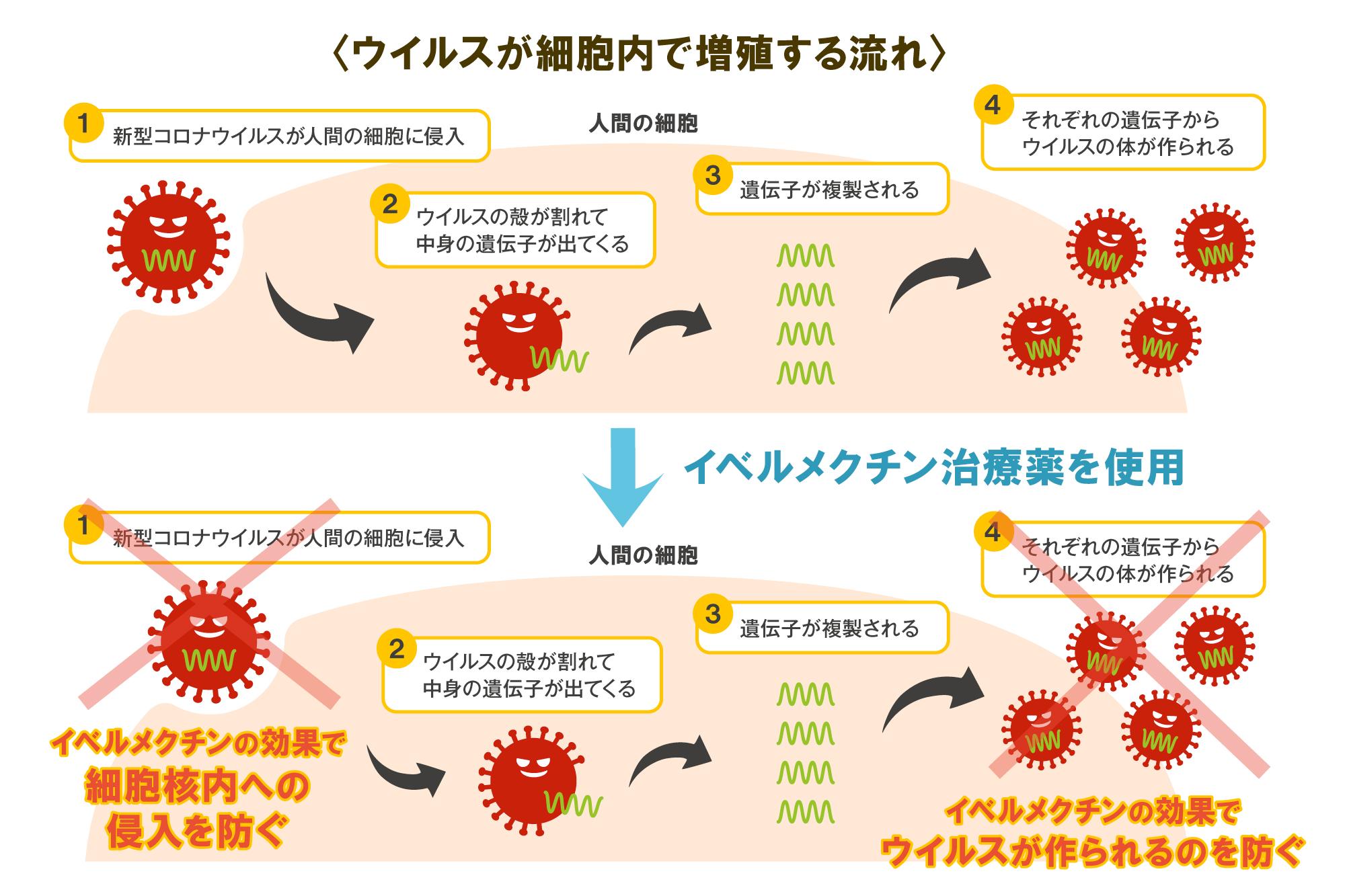 臨床 イベルメクチン コロナ